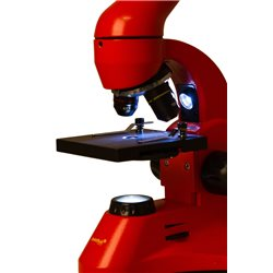 Microscopio Levenhuk Rainbow 50L PLUS, arancio