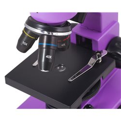 Microscopio Levenhuk Rainbow 2L, ametista